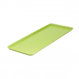 Lime Rectangular Platter 500mm x 180mm