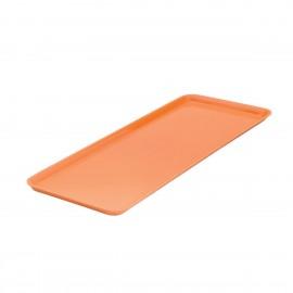 Orange Rectangular Platter 500mm x 180mm