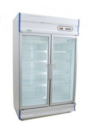 Anvil Aire GDJ1261 two door freezer